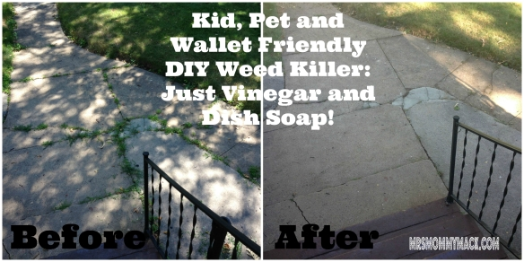 Kid, Pet and Wallet Friendly Weed Killer: My Attempt at the Dish Soap & Vinegar DIY Plant Murderer | mrsmommymack.com